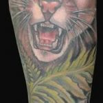 Tatouage felin cougar par katelyn grue